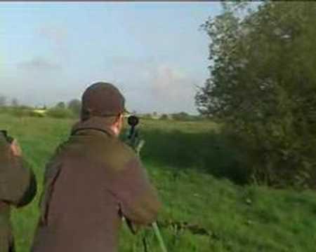 Polsko lov srnce