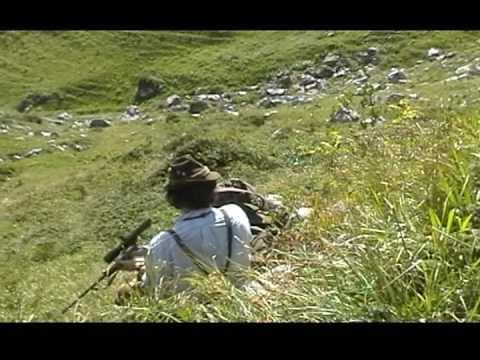 lov sviště