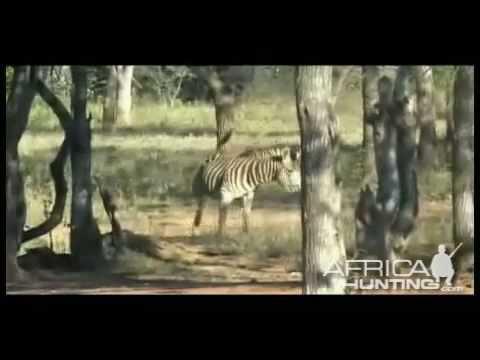 Tanzania lov