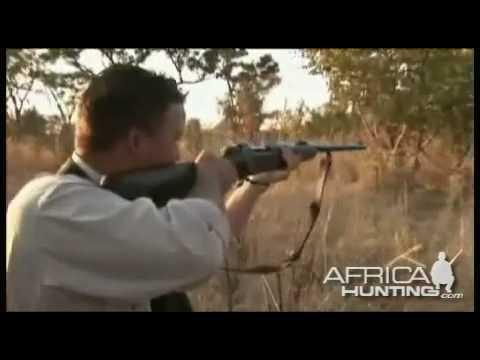ZIMBABWE lovecké video