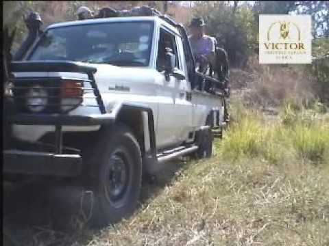 AFRICKÉ VIDEO