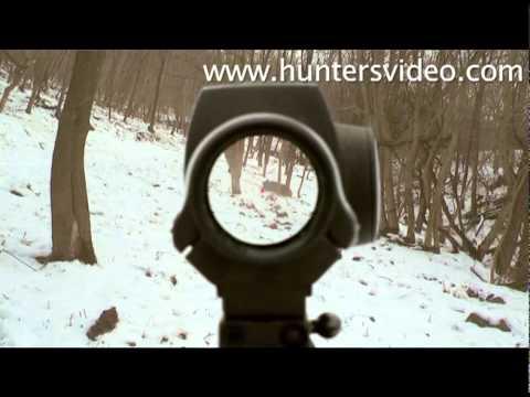 lov prasat