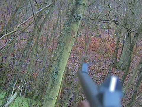 lov divočáků