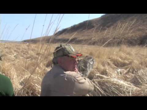 Lov medvěda kodia