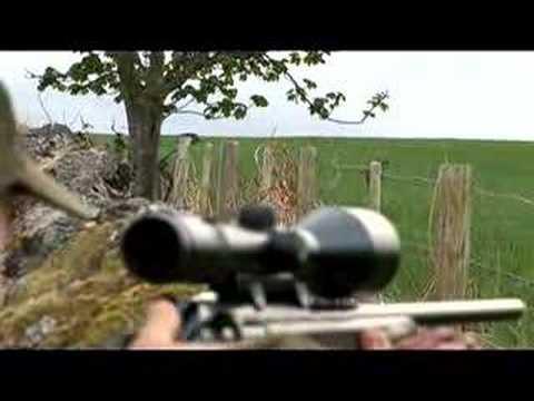 srnčí lov