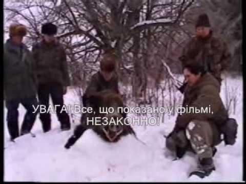 Lov kňoura Rusko