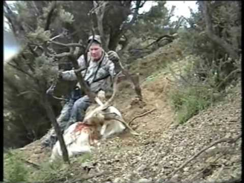 Lov jelena na Novém Zélandu