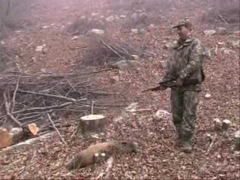 Lov prasat v Bulharsku IV