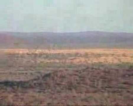 Lov v Namibii