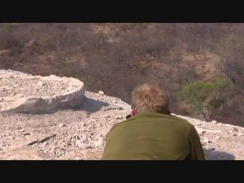 Lov paviánů v Severní Africe