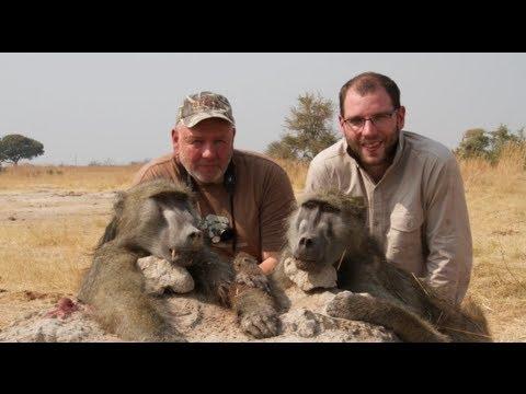 Lov paviánů v Zimbabwe