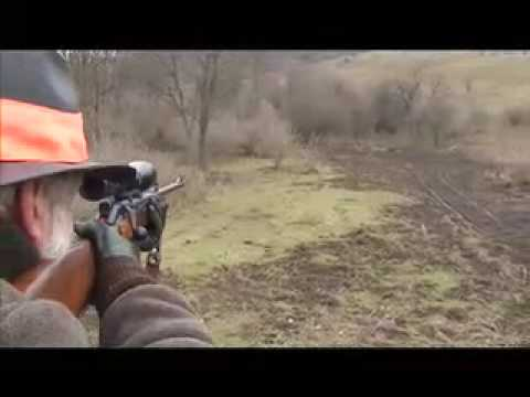 Lov divokých prasat v Maďarsku II