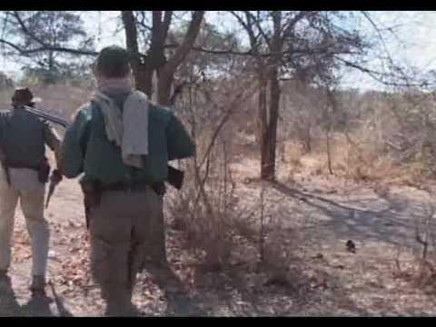 lov v Tanzánii
