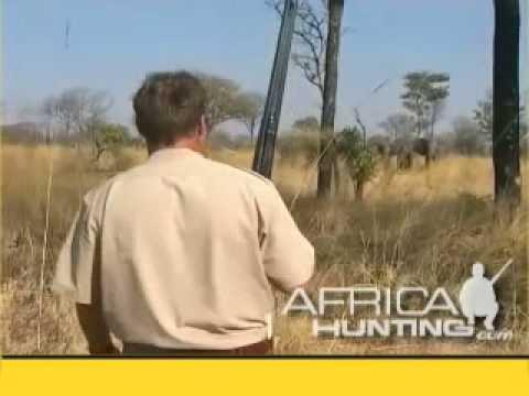 Nezdařený lov slona