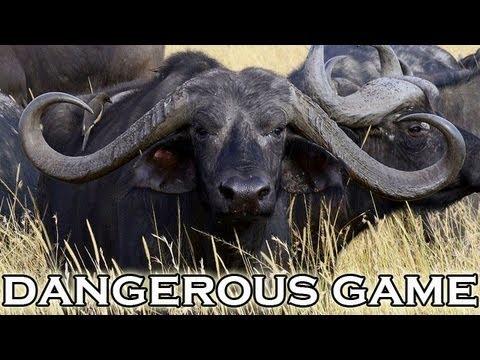Nebezpečný lov v Mozamiku