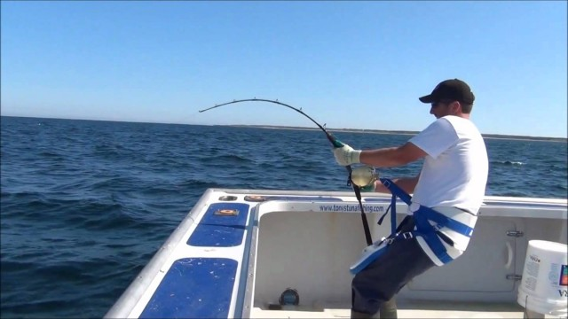JIGNPOP: 1,000lb Giant with 450g Black Hole Cape Cod Special Standard Rod in PEI