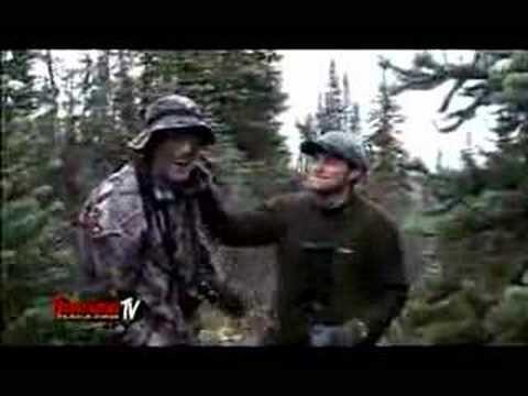 Lov nebezpečného losa