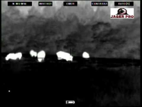 Noční lov II