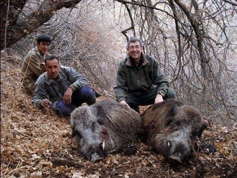 Lov prasat Severní Tádžikistán