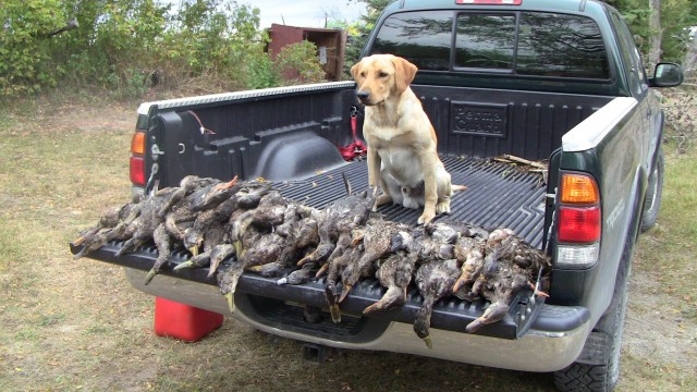 Den otevřených dveří Duck Hunting 2012