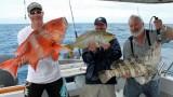 Rybolovov velkých ryb na Velkém bariérovém útesu