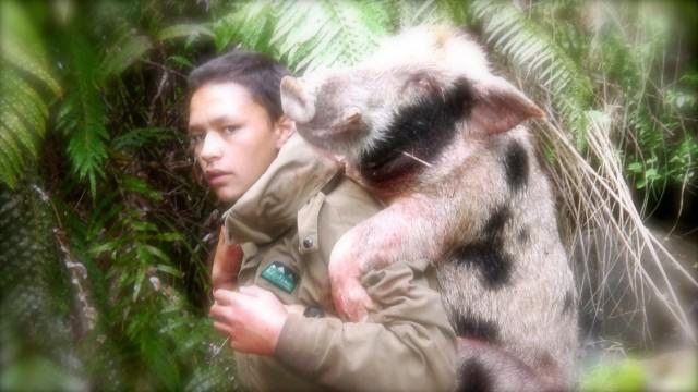 Lov divočáků Nový Zéland