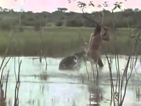 Lov Indiánů – tapíři,….
