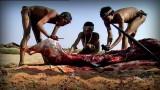 krvavý lov