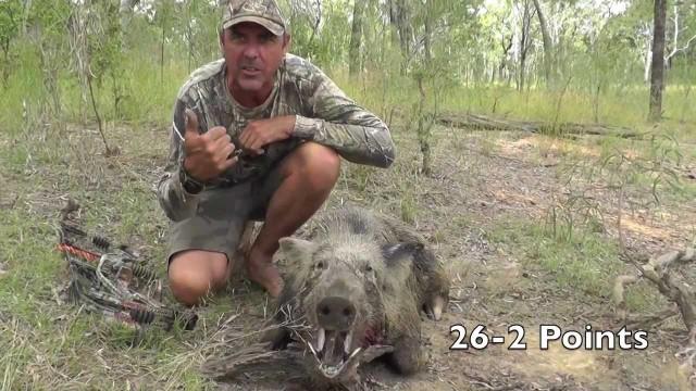 Lov divočáka lukem Austrálie 2013 IV.
