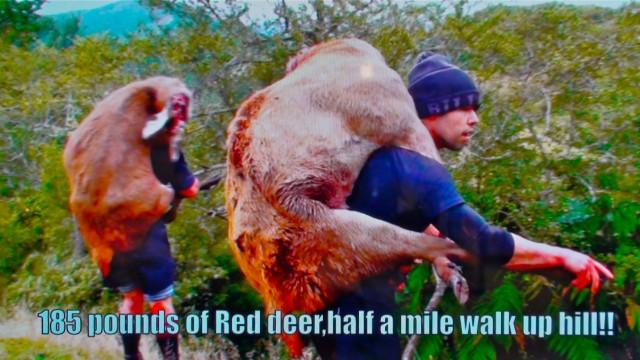 Lov jelena na Novém Zélandu 4