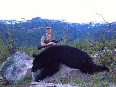 Lov medvěda na jaře