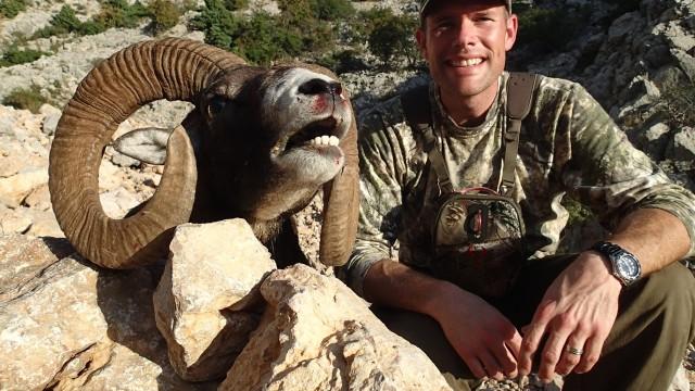 Lov muflona