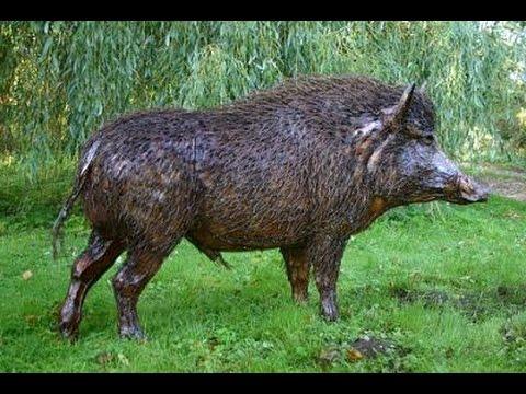 Naháňka na prasata ve Francii