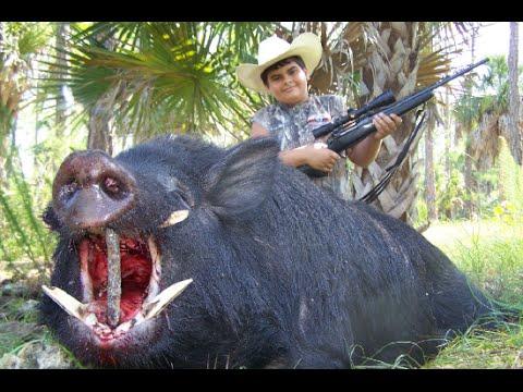 Lov na prasata
