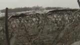 Lov kačen na řece 2015