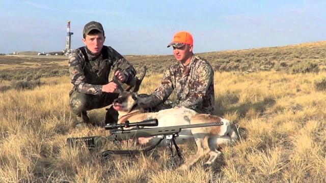 lov antilopy 2012
