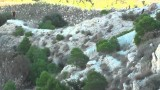 Lov prasat v Tunisu