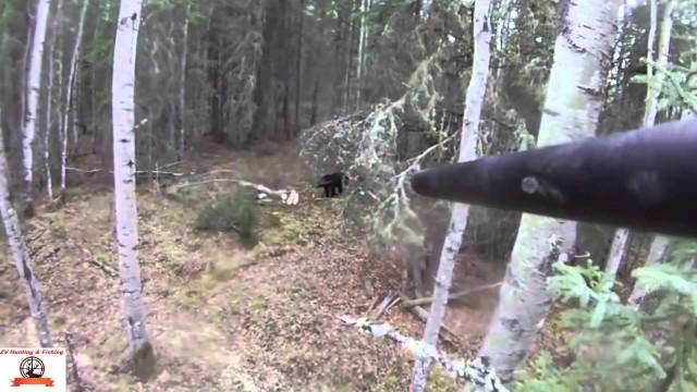 Lov medvěda z výšky