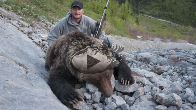 Lov grizzlyho