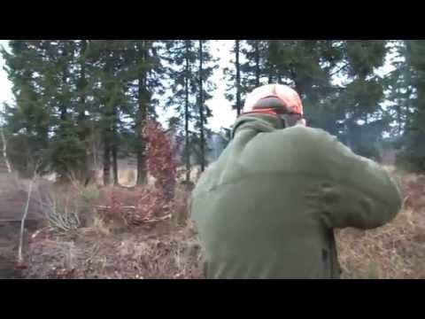 Lov prasat – pěkný moment