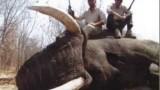 Lov velkého slona v Africe